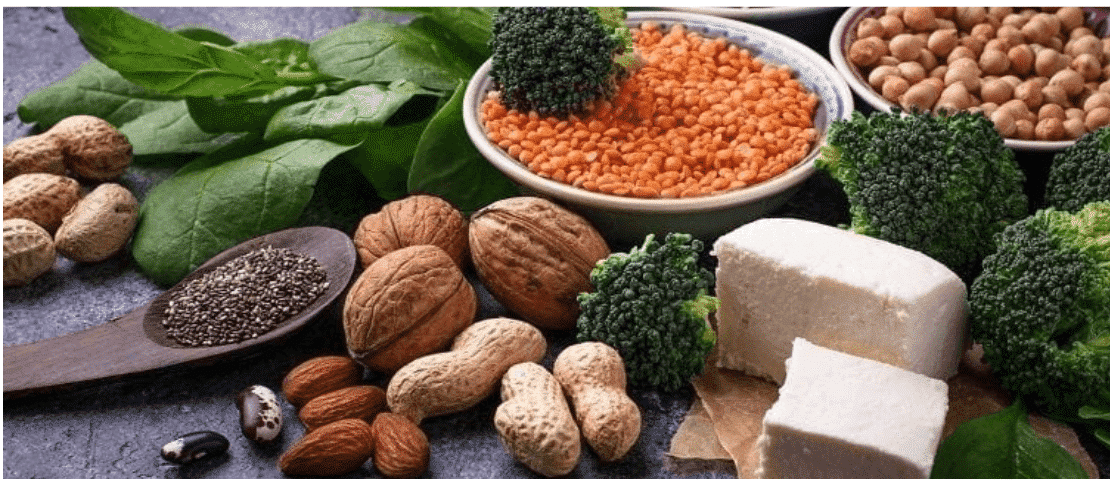 Protin Diet For Vegetarians 6